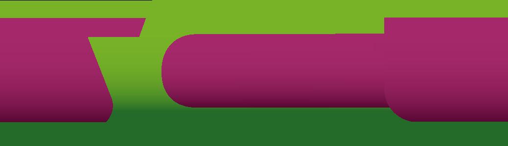 WordCamp Nashik 2017 Yoast